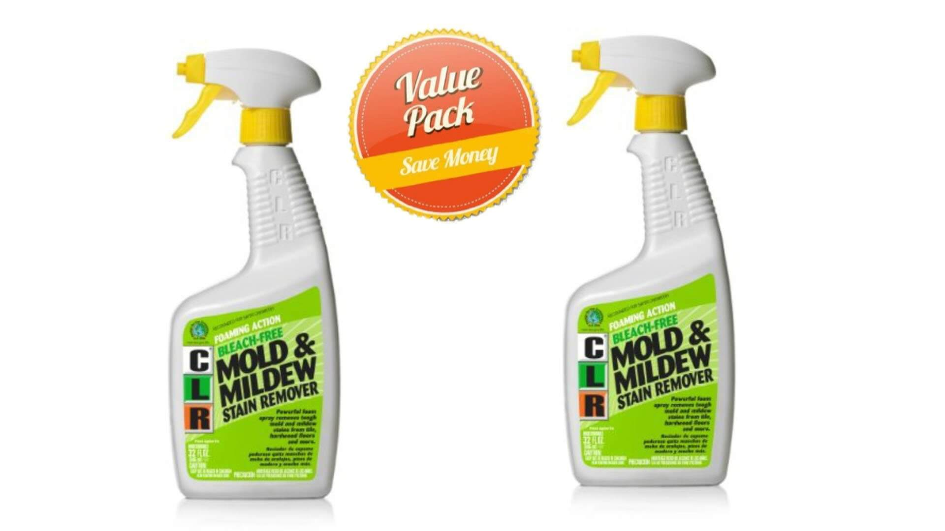 Best Mold Removal Products Reviews