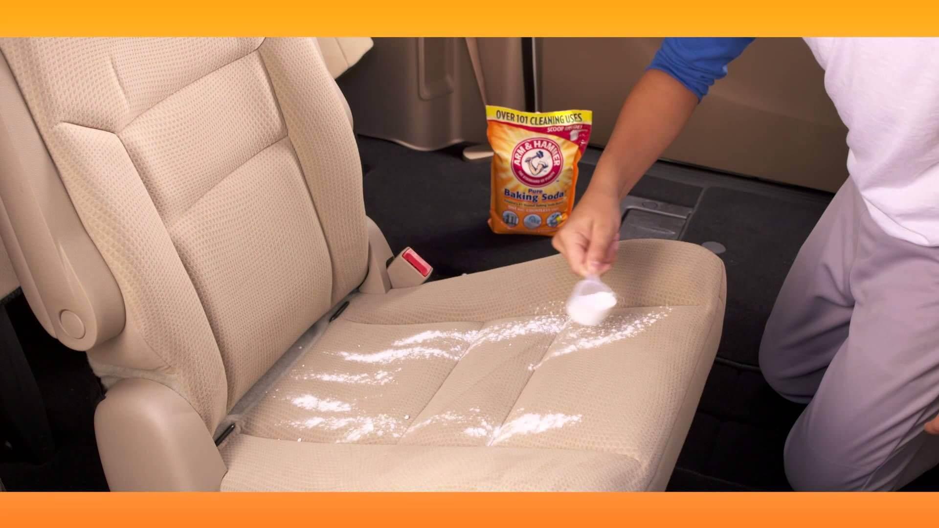 Best Car Odor Eliminator Reviews